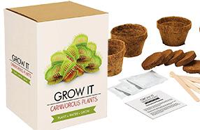 Kit para cultivar tus propias plantas carnívoras