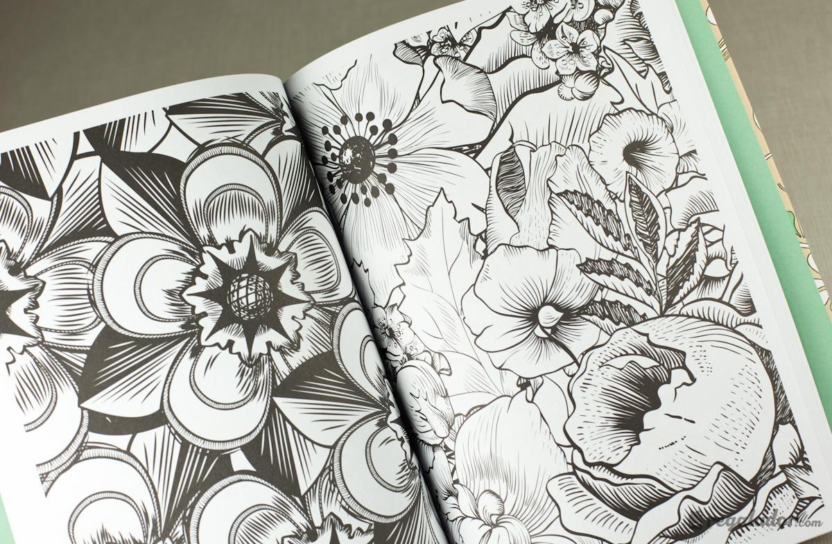 Arte antiestrés: 100 láminas para colorear y dormir bien en ...