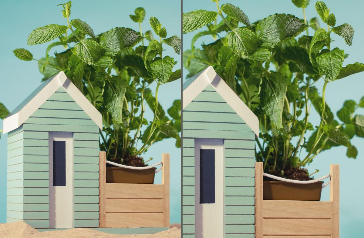 Regalador kit para sembrar plantas arom ticas - Plantar plantas aromaticas ...