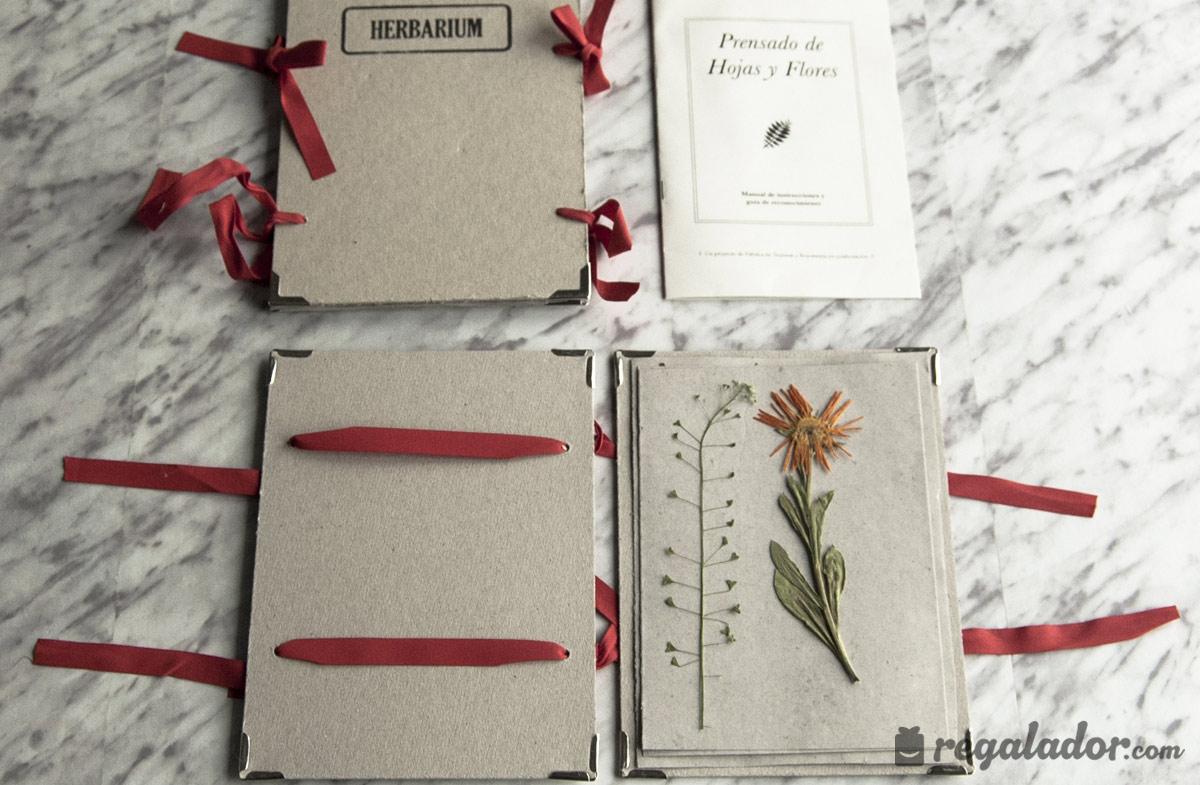 Kit de prensado de flores