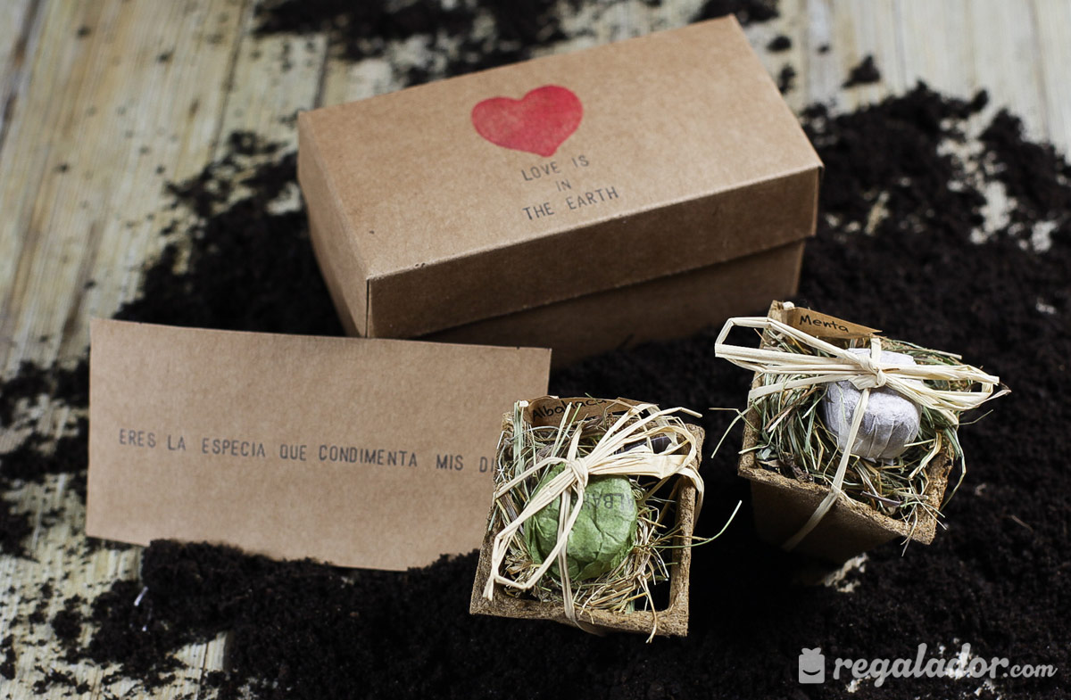 "Caja ""Love is the Earth"" para jardineros románticos"