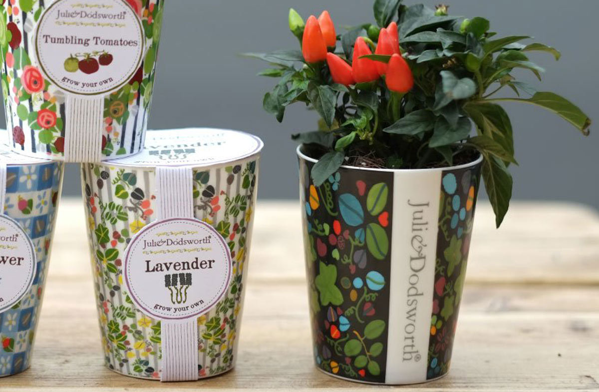 Macetas decorativas para plantar en casa