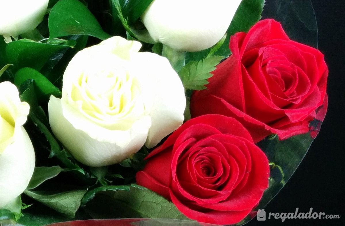 Ramo De Rosas Rojas Y Blancas En Regaladorcom