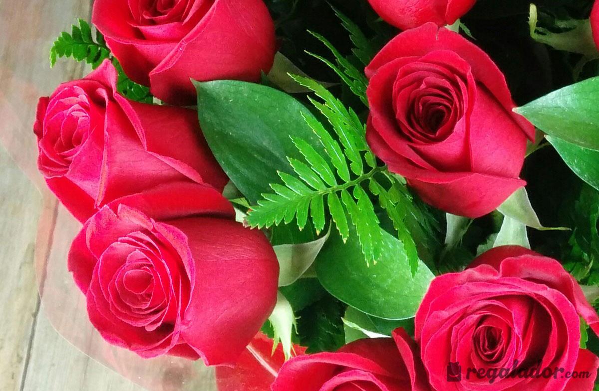 Famoso Rosas Uñas Viñeta - Ideas Para Esmaltes - aroson.com