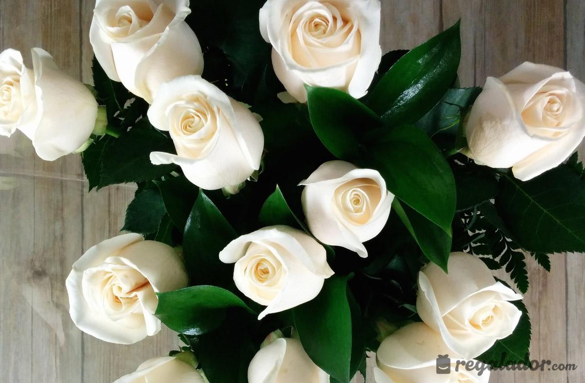 Delicado Ramo De Rosas Blancas En Regaladorcom - Imagenes-de-ramos-de-rosas-blancas