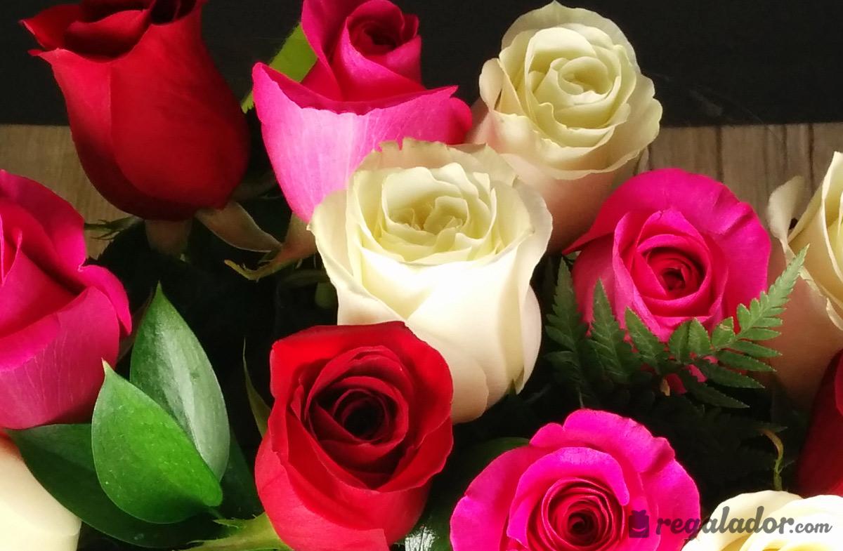 Ramo de rosas rojas rosas y blancas en - Ramos de flores grandes ...