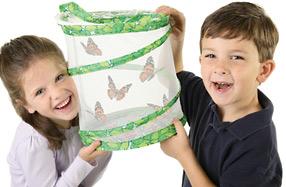 Butterfly Garden: cría tus propias mariposas