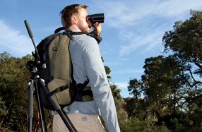 Lowepro Scope Porter 200 AW: para fotógrafos de aves