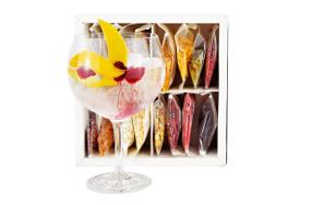'The Gin&Tonic Kit': los 8 ingredientes clave para personalizar tu copa