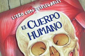 """""""El cuerpo humano"""": libro infantil con desplegables"""