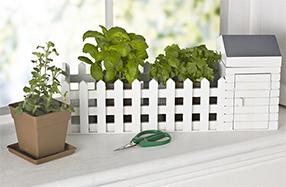 Mini parcela de plantas aromáticas con valla y cobertizo
