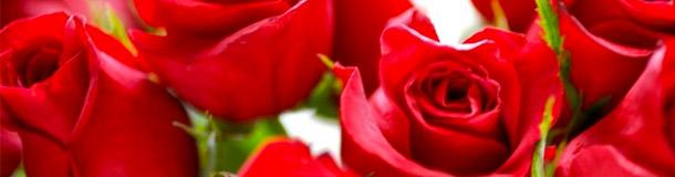 Los Ramos de Rosas más románticos
