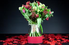 Bouquet de tulipanes para ocasiones especiales