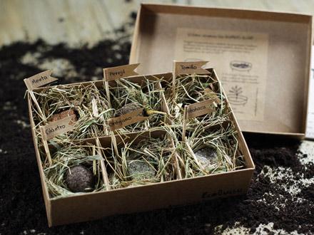 bolas-semillas-aromaticas