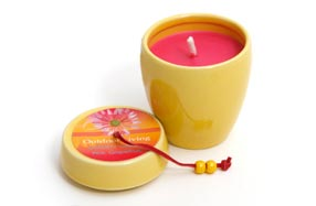 Juego de dos velas aromáticas de uva para exteriores