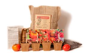 Kit ecológico para cultivar tomates