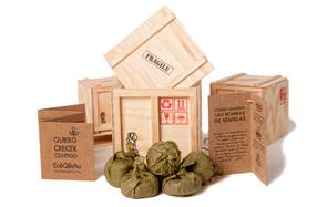 Kit ecológico con 6 bombas de semillas