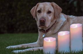 Luminara: las mejores velas eléctricas para exteriores