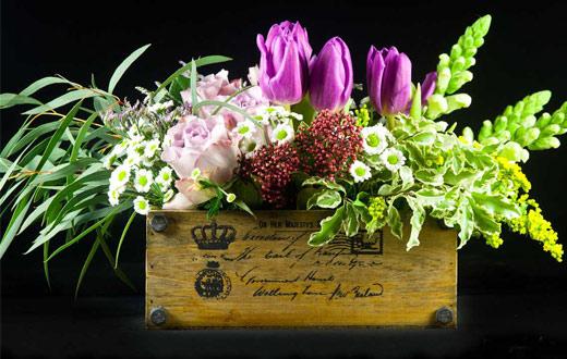 cajon-flores-temporada2