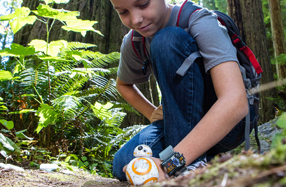 BB-8: el robot controlado por la pulsera Force Band