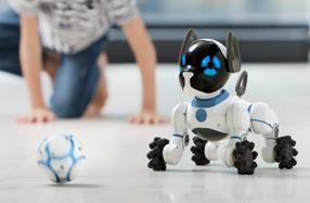 Chip: el perro robot más listo