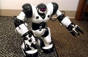 Humanoide Robosapien: el robot más 'humano'