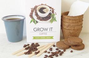 Kit para cultivar tu propia planta con aroma a café