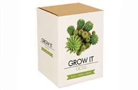 Kit de cultivo de cactus