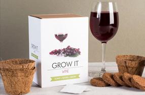 Kit para cultivar tu propia planta de cerveza o viñedo