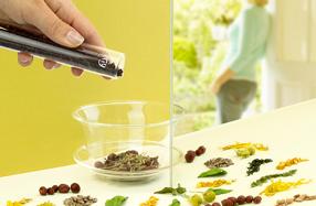 Pack DIY de tés orgánicos para preparar mezclas personalizadas