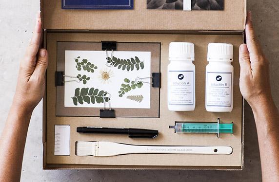 Kit de revelado fotográfico estilo cianotipia