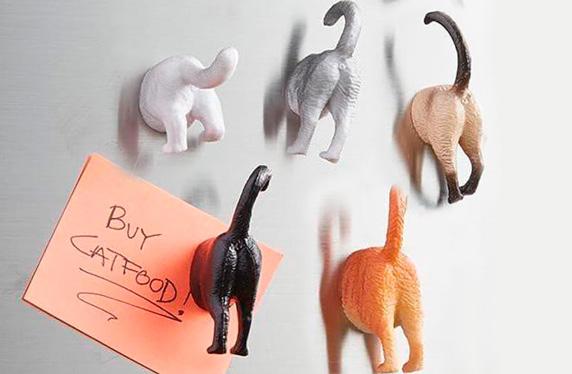 Set de imanes de mascotas