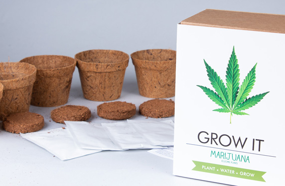 Kit para plantar Marihuana