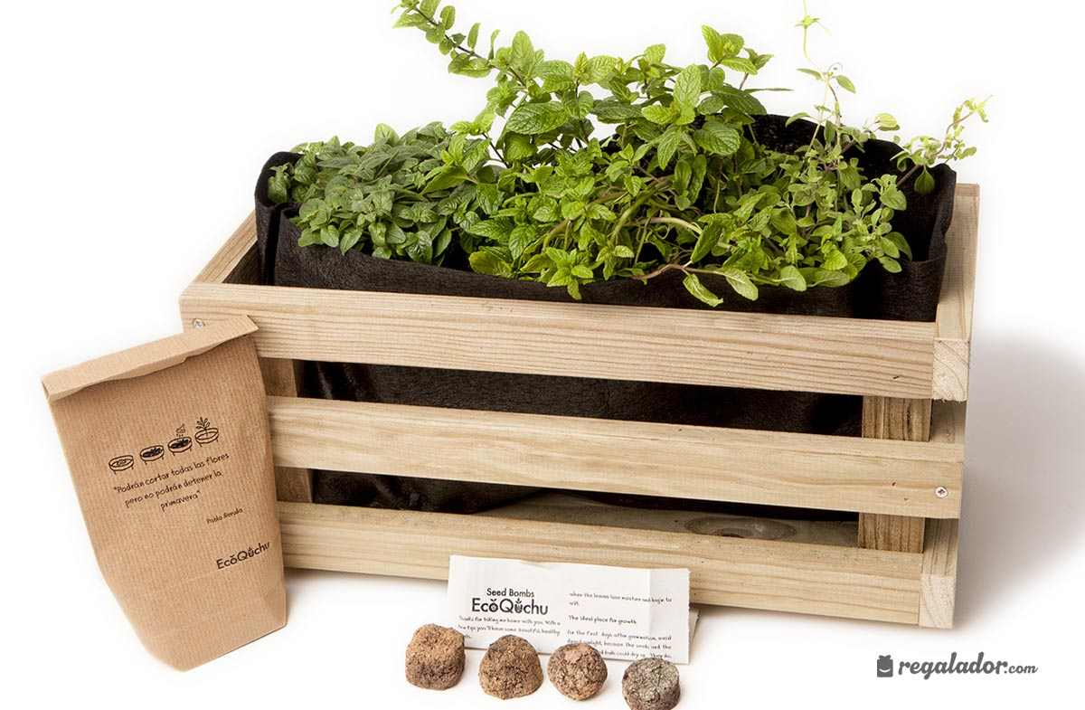 Kit jardinera para el cultivo de aromáticas