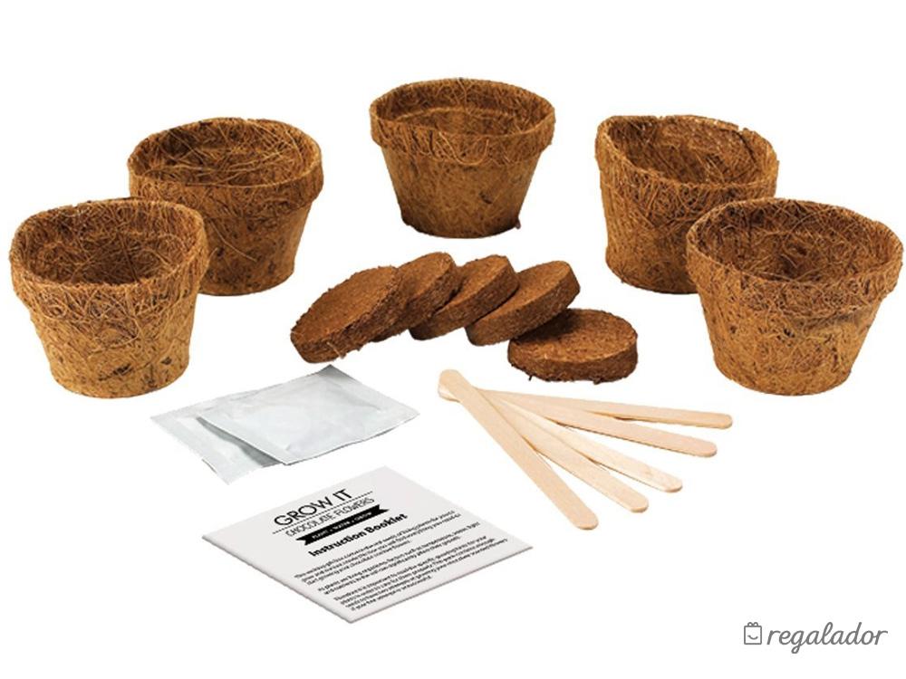 Kit para plantar tus propias flores con aroma a chocolate