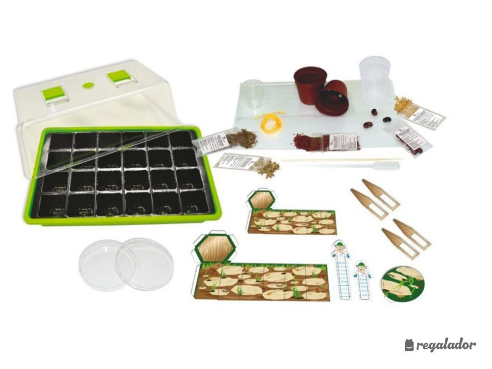juego invernadero para niños