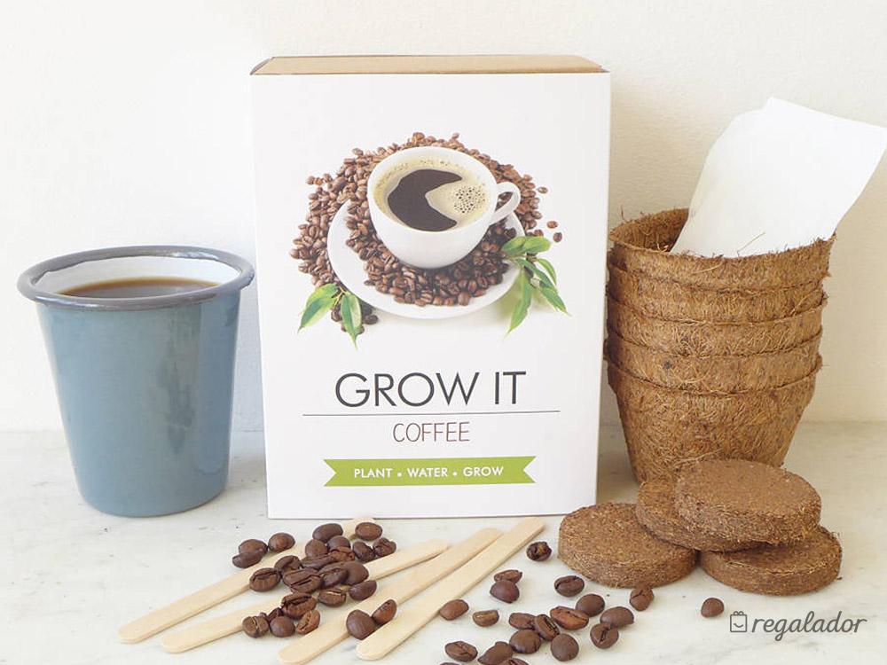 Kit para cultivar tu propia planta con aroma a café en Regalador.com